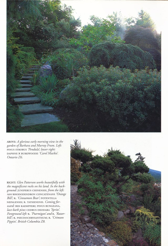 Foliage-and-Garden-Design-page-3
